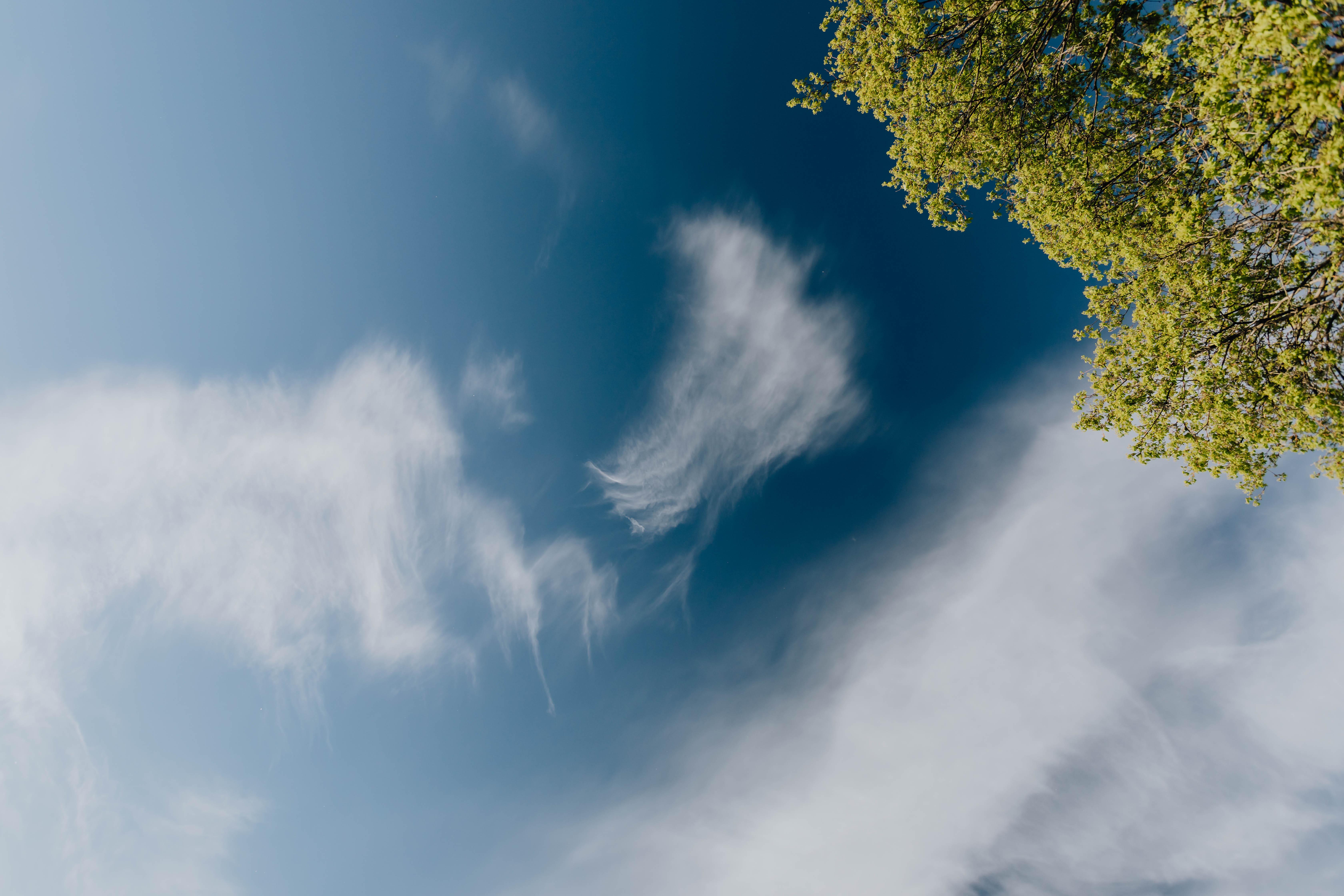 blue sky belvedere kurzgeschichte valeria